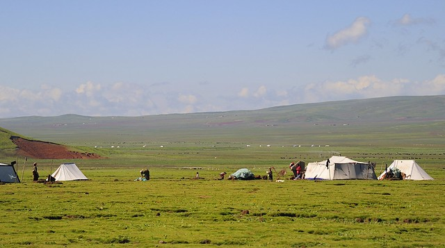 Nomads and yaks in their vast landscape, Tibet 2012
