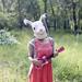 乌克兔兔 by ♫muxu