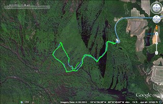 Sparkleberry Route 6-2-2013