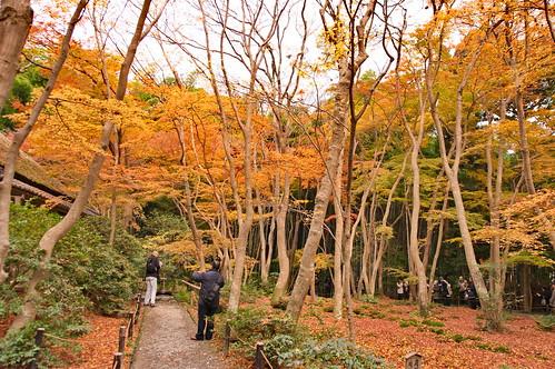 【写真】2012 紅葉 : 祇王寺/2021-09-05/IMGP7846
