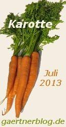 Garten-Koch-Event Juli 2013: Karotten [31.07.2013]