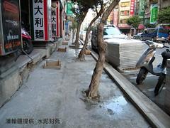 行道樹樹根慘遭水泥封死。潘翰疆提供。
