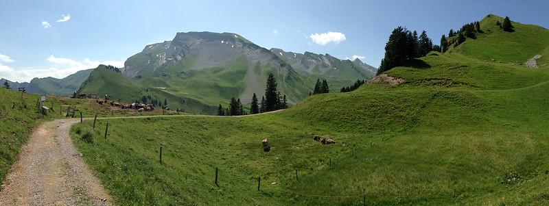 2.panoramabild klewenalp blick auf alp