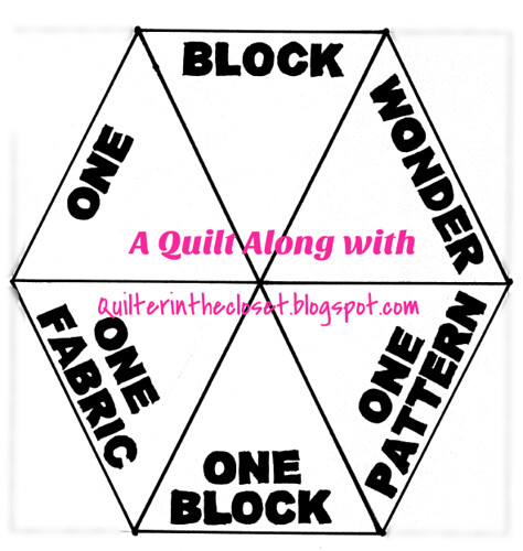 Quilter in the Closet: Cutting and piecing tips - One Block Wonder ... : one block quilt - Adamdwight.com