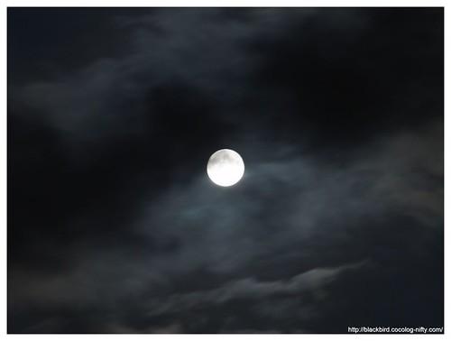 Blue Moon #01
