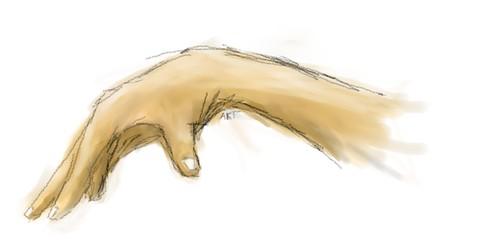 hand_colour1