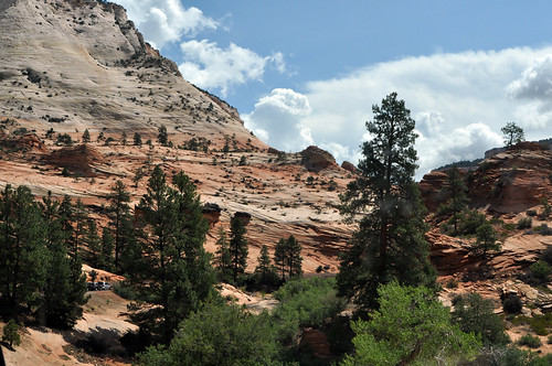 Zion National Park #2