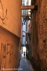 Tra i caruggi di Genova - Liguria 2013