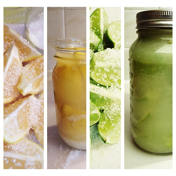 Preserving Lemons and Limes