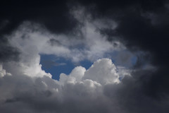 storm(0.0), thunderstorm(0.0), black-and-white(0.0), cumulus(1.0), cloud(1.0), daytime(1.0), sky(1.0),