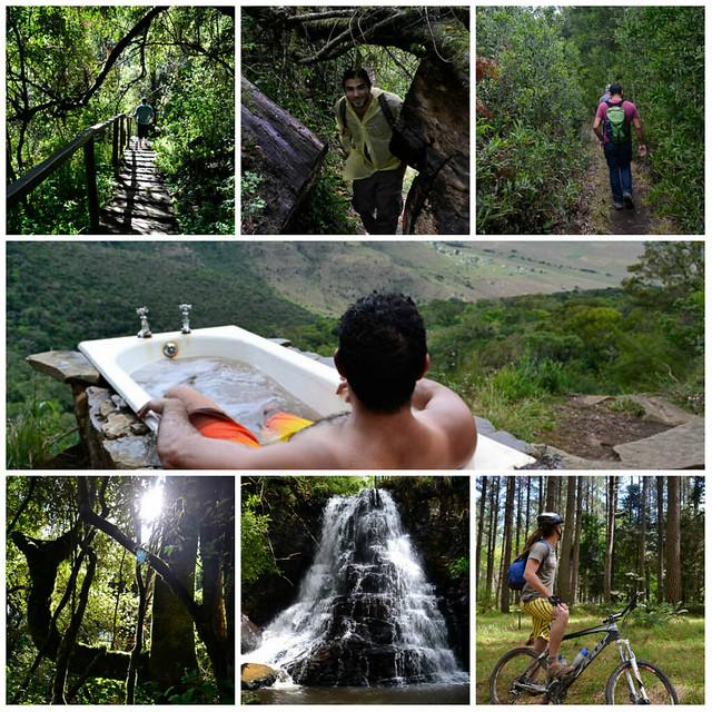 Enchanted Hogsback Forest.