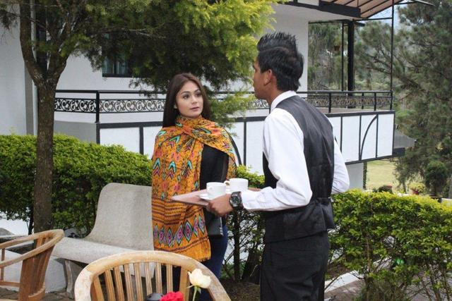 Sinopsis Drama Terukir Di Bintang Lakonan Shiha Mentor