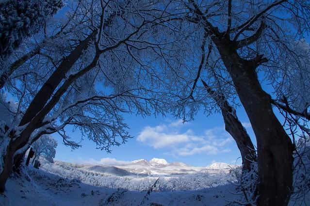 写真_御伽の冬1