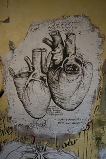 Anatomie du corps humain selon Da Vinci DDC_9481