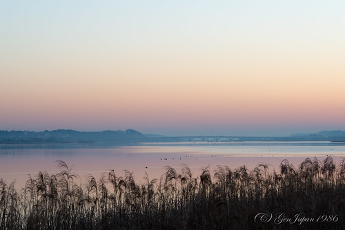 bridge sky japan sunrise landscape twilight day clear chiba 日本 空 風景 2014 千葉県 日の出 teganuma 朝焼け 手賀沼 nikond600 手賀大橋 柏市