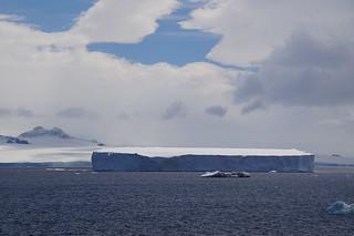 541 Antarctic Sound