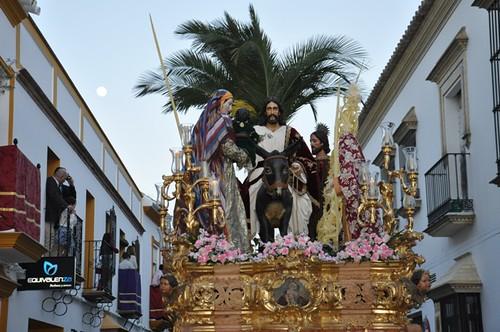 AionSur 13833549824_b55fec6f82_d Jesús entró en Jerusalen en una espléndida tarde de Domingo de Ramos Cultura Semana Santa