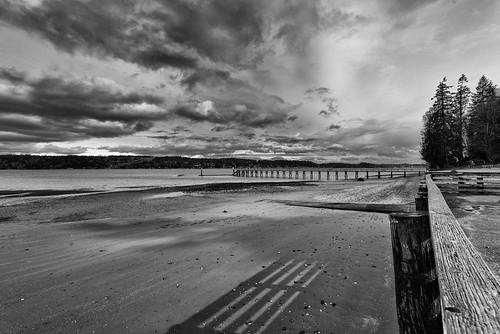 beach illaheesp blackandwhite clouds water