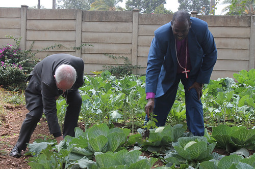 The Archbishop of Canterbury admiring vegetables at the Bishop's Bourne