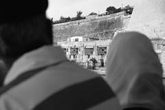 Malteze.14