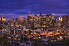 Seattle Shimmer