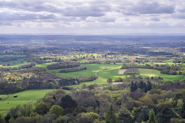 SE View from Leith Hill Tower