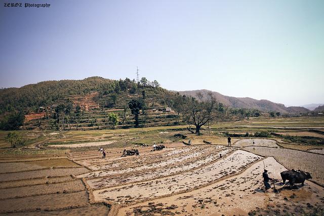 尼泊爾•印象0012-3-3.jpg