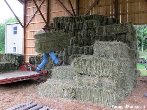(28-30) Stacking the last of the first cutting of hay, 170 bales are now safely in the barn - FarmgirlFare.com