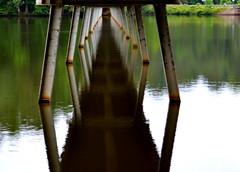 Under the Lake Johnson Bridge