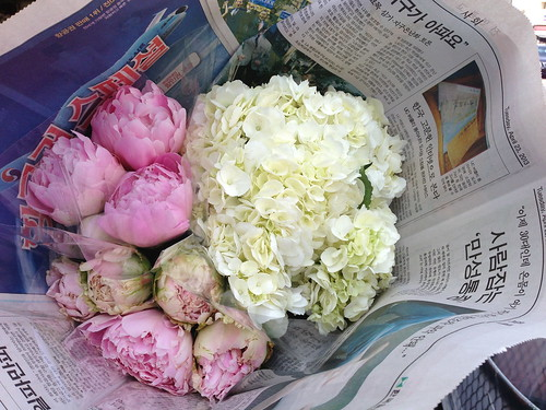 My flowers from the Flower District-- peonies and hydrangeas.