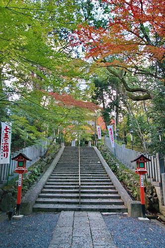 【写真】2012 紅葉 : 長岡天満宮/2020-10-09/IMGP6548