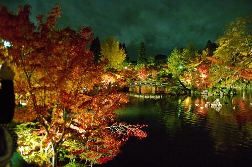 【写真】2012 紅葉 : 永観堂/2020-05-30/IMGP6252