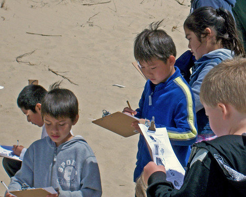 Siuslaw Elementary School students from Florence, Ore., record information about animal tracks found within the Oregon Dunes National Recreation Area during a field trip hosted by the Siuslaw National Forest field rangers, part of the Valuing People and Places program. (U.S. Forest Service photo)