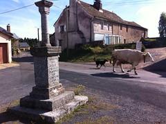 La Chaze-de-Peyre, sur les Chemins de Saint-Jacques de Compostelle