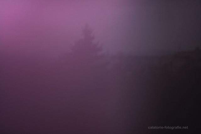 Fotografia Pinhole folosind un capac de spray. Să redescoperim camera obscură 10733579694_c8f4920bbb_z