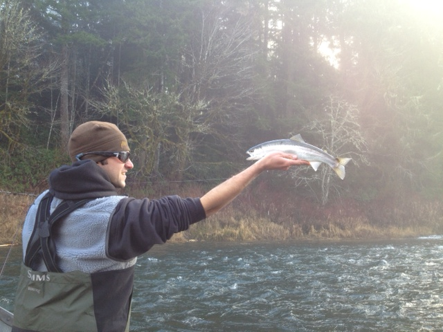 The caddis fly oregon fly fishing blog mckenzie river for Siletz river fishing report