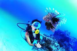 Onderwater biologie