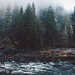 Snoqualmie River by Jared Atkins