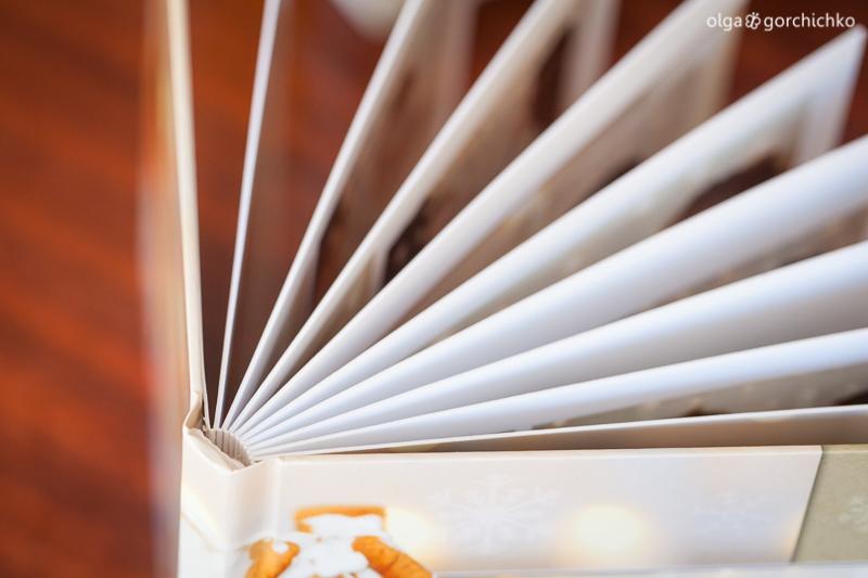 minibuk-novogodnij-fotoproyekt-2