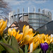 Spring is approaching in Strasbourg by European Parliament
