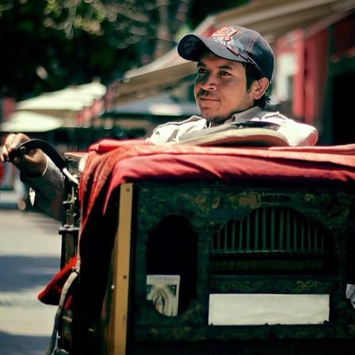 Genaro es organillero en Coyoacán, tradición que llegó a México alrededor de 1880. #df #coyoacan #mexico #retratos #ig_mexico #walkingmexico #500px http://bit.ly/mac500px