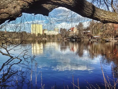 Järla lake - Project 365 / 104