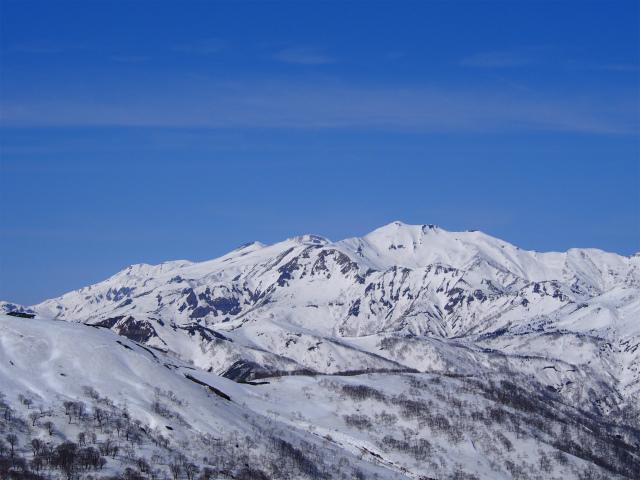 野伏ヶ岳 (243)