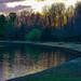 Small photo of Allen Pond Park