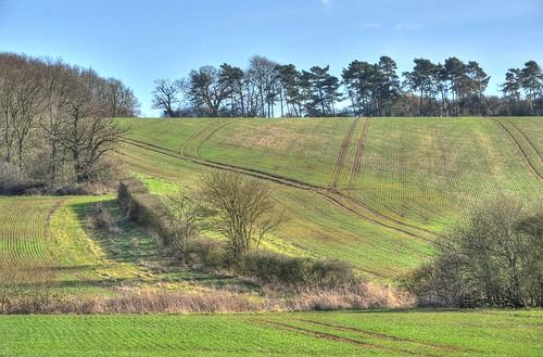 northamptonshire farmland landscapes crops