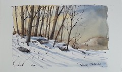 """Painting winter trees and shadows"" Line and Wash Watercolor. New YouTube Video."