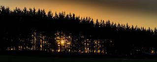 Sunset in Araucanía Region