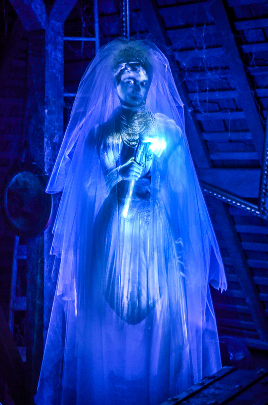Haunted Mansion Axe lady