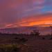 Mauna Loa Sunset by Pat_EDH