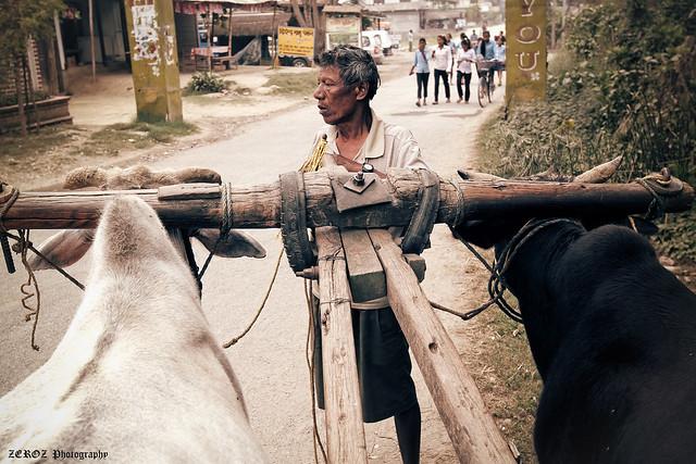 尼泊爾•印象0041-2-3.jpg